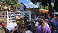Autoridades coordinan labores de apoyo y rescate en Sinaloa