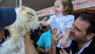 Promueve la Benito Juárez protección animal con Gatofest