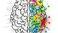 Las neuronas sí se regeneran: 6 técnicas para activar la neurogénesis