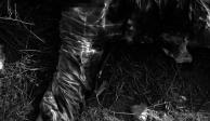 """Muere líder de """"Los Tequileros"""" durante enfrentamiento en Totolapan"""