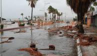 Suman 6 muertos por <i>Lidia</i> en Baja California Sur