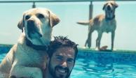 ¡El mejor amigo del hombre! Estos son los perros de algunos famosos deportistas (FOTOS)