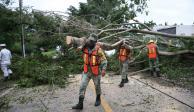 Yucatán-Delta-huracán