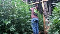 marihuana-reuters