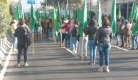 marchas_mujeres