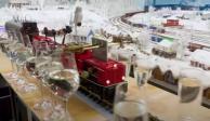 Tren miniatura-récord-Alemania
