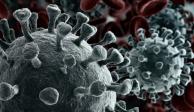 ¿Qué se sabe de la variante Lambda del coronavirus y cómo está siendo su expansión?