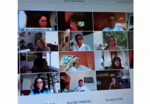 Reunión virtual parlamentaria de legisladores de distintos partidos políticos.