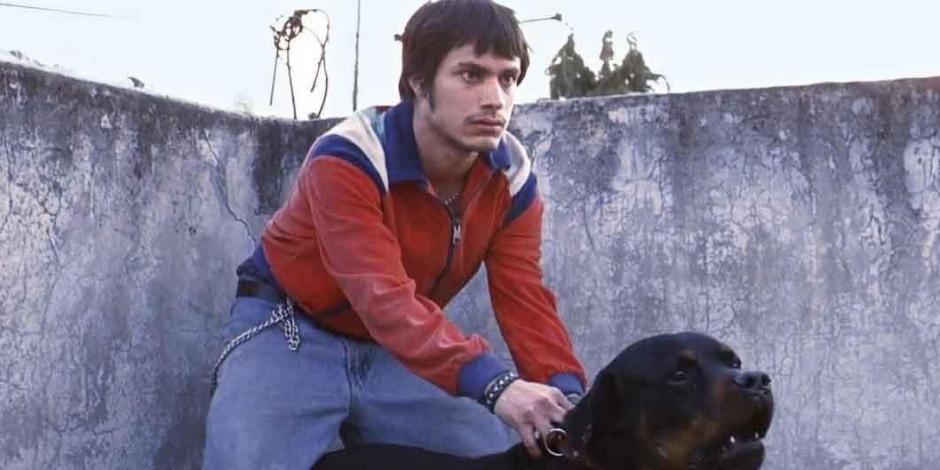 """¿Secuela?... """"Amores perros"""" celebra 20 aniversario con estas actividades"""