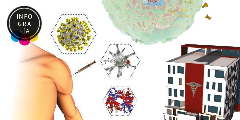 Tres vacunas lideran la carrera contra el SARS-CoV-2