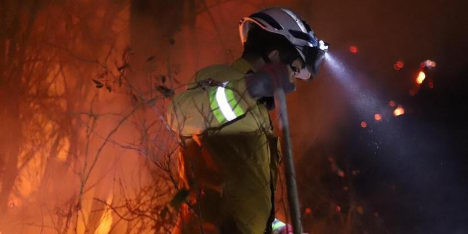Los incendios en Nuevo León han dejado una afectación de 8 mil hectáreas