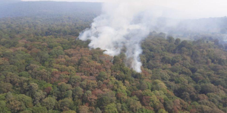 tepoztla-tepozteco-incendio forestal-ok