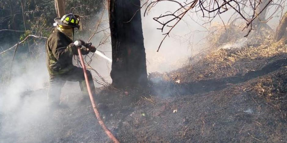 Incendio en Bosque de Chapultepec
