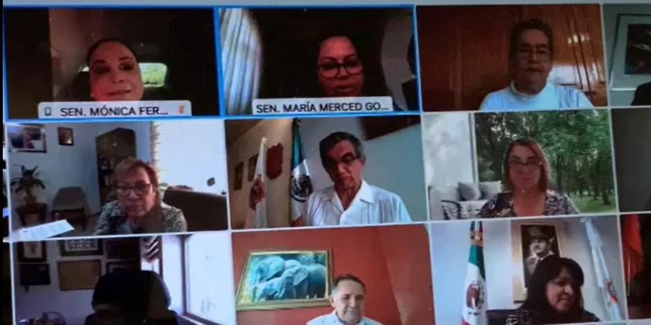 Reunión virtual de senadores