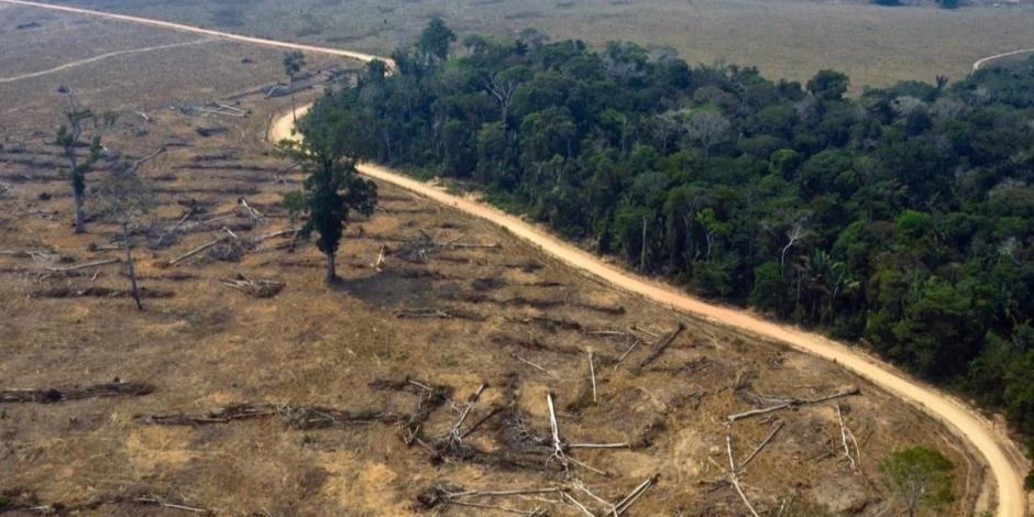 Pantanal, en Bolivia, Brasil y Paraguay, está perdiendo su agua dulce
