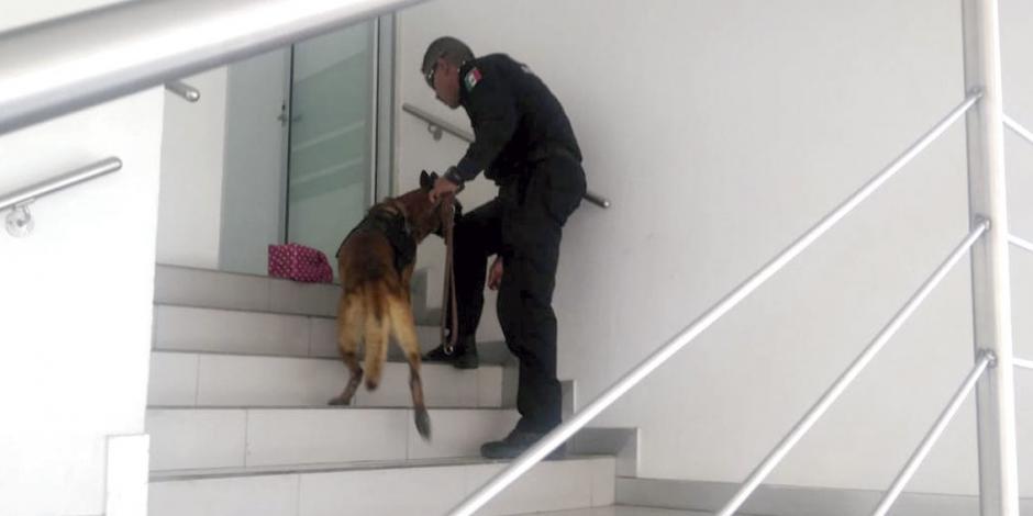 Por amenaza de bomba, desalojan banco en Celaya