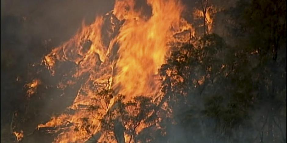 Humo de incendios forestales en Australia ya llega hasta Argentina y Chile