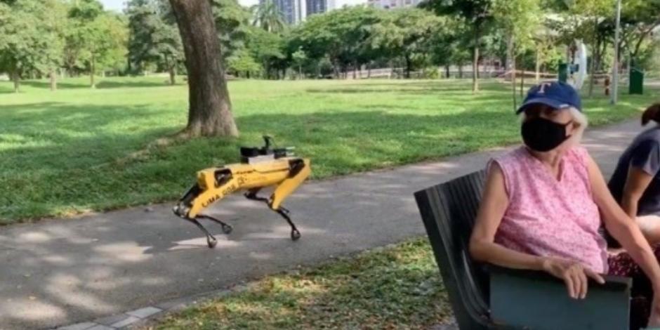 Él es Spot, el perro robot que vigila que humanos respeten sana distancia (VIDEO)