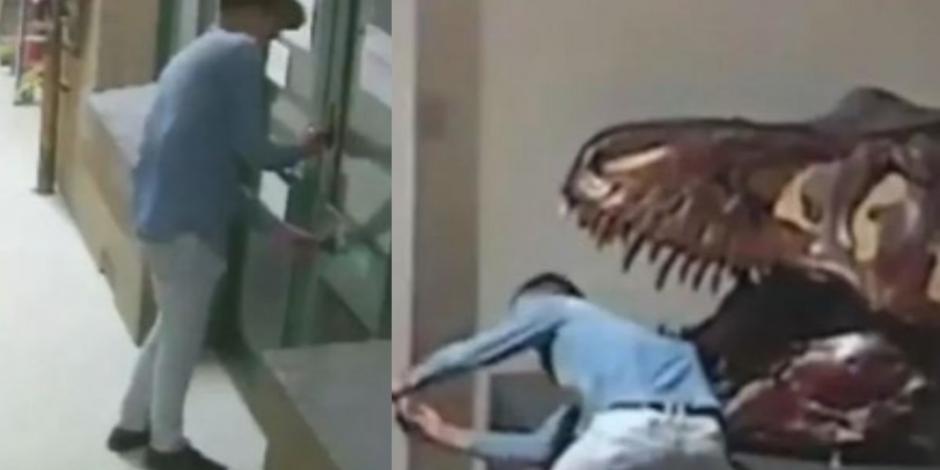 Se mete a robar en museo y hasta se toma selfie con dinosaurio (VIDEO)