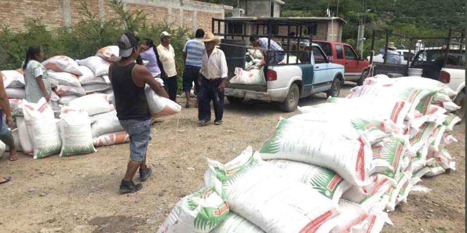 Remueven a jefe de programa de fertilizantes tras fallas y reclamos