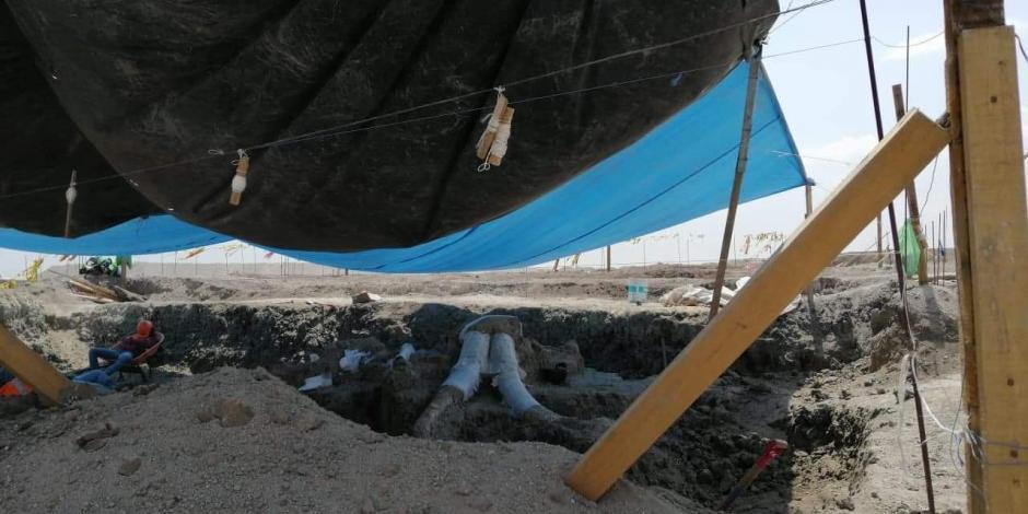 El cementerio de mamuts que está retrasando el aeropuerto de AMLO