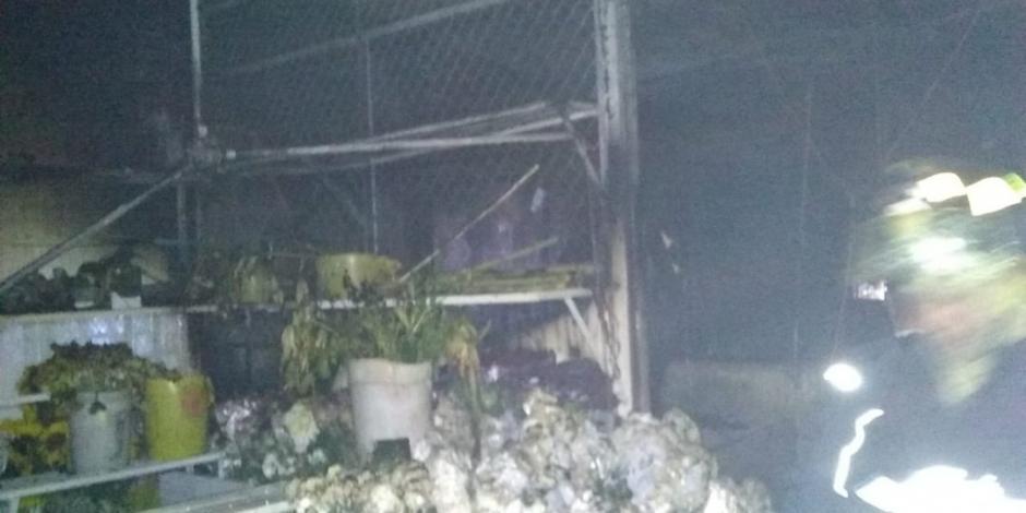 Incendio consume 12 locales del mercado de Las Flores en Xochimilco