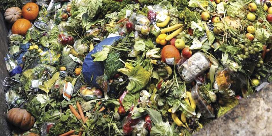 Tiran 20 millones de toneladas de alimentos