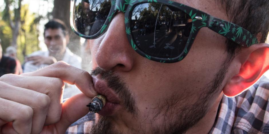 Senado sí va por incluir uso lúdico de cannabis