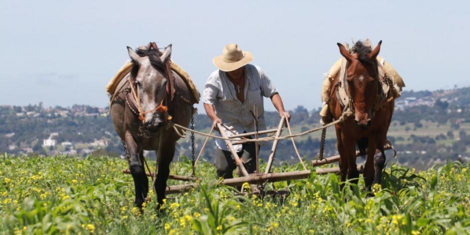 Diputados piden acuerdo que apoye a todos los sectores, más al agrícola