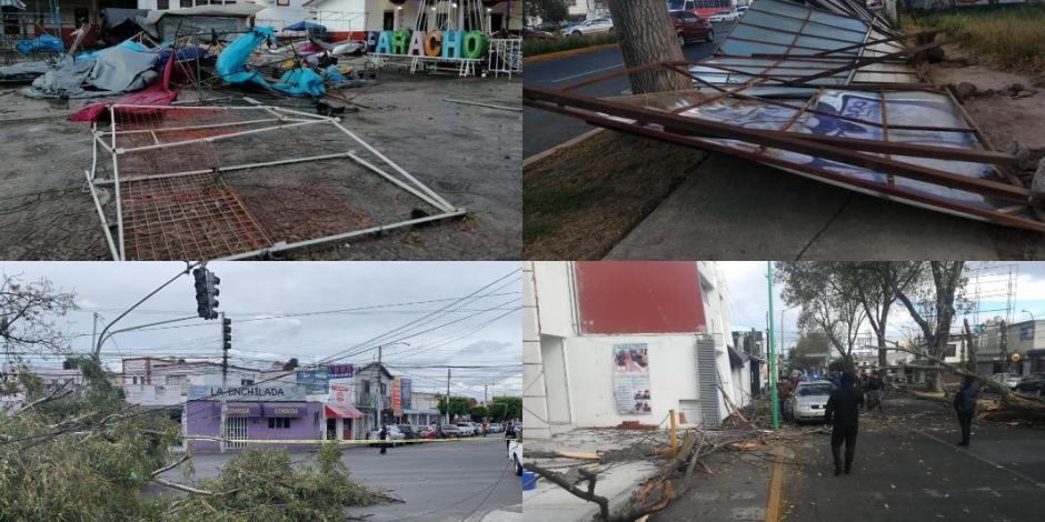 rachas de viento, afectaciones, estados, arboles