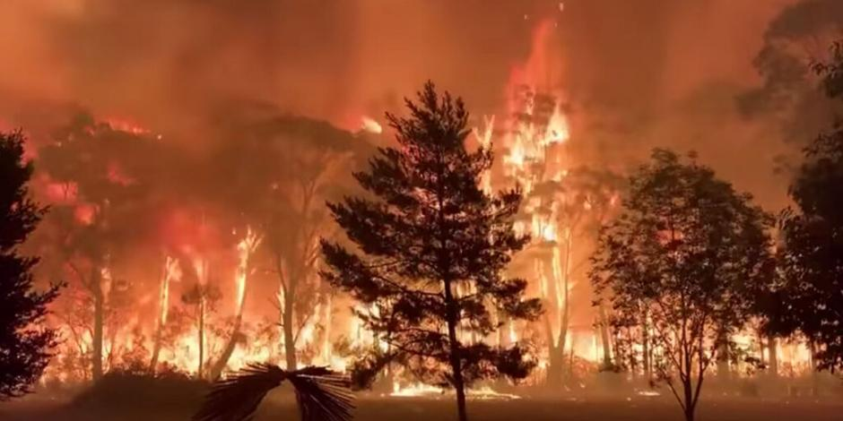 Asciende a 21 la cifra de muertos por incendios forestales en Australia