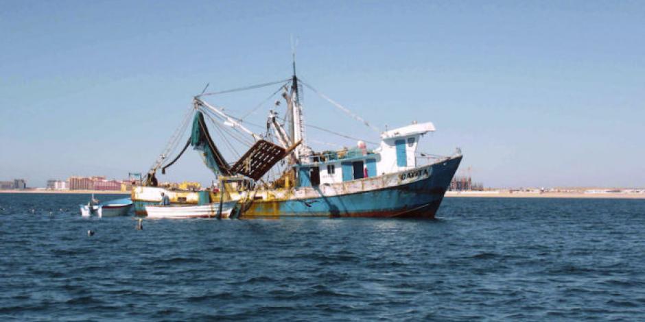 Investiga Cofece presunto monopolio en combustible para barcos
