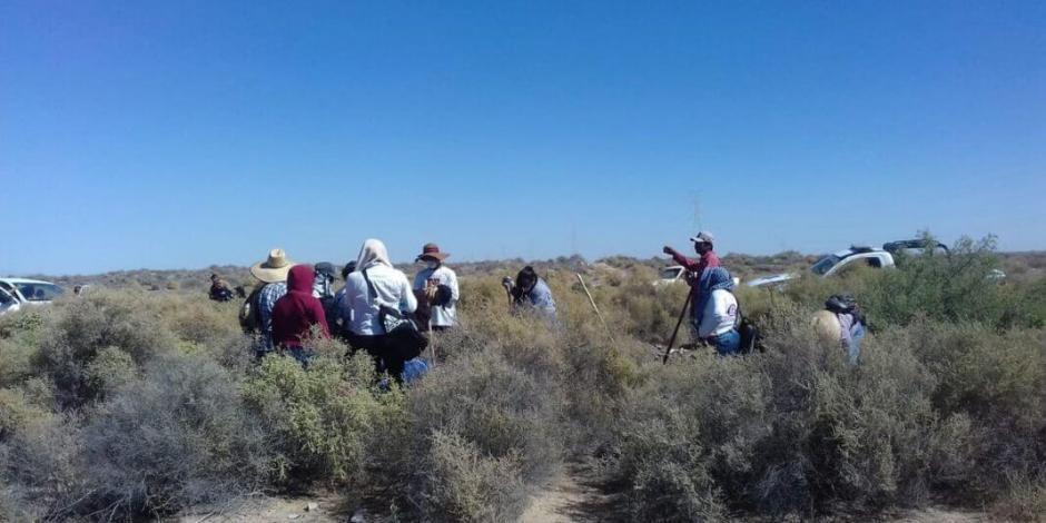 Descubren 10 osamentas más en Puerto Peñasco