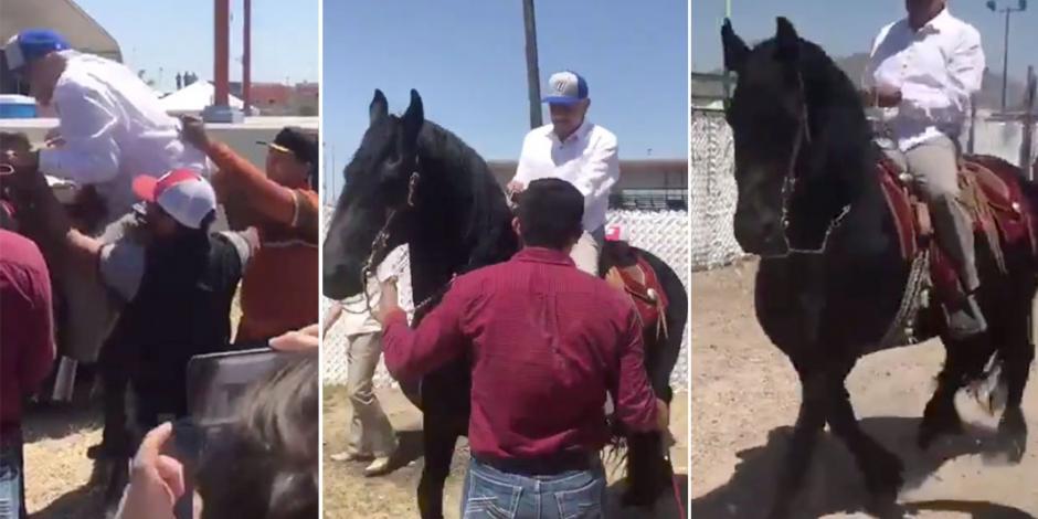 VIDEO: AMLO monta a caballo en Chihuahua