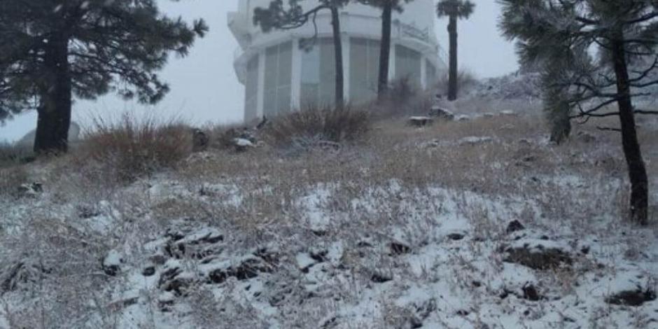 Cae primera nevada en Sierra de Cananea, Sonora (VIDEO)