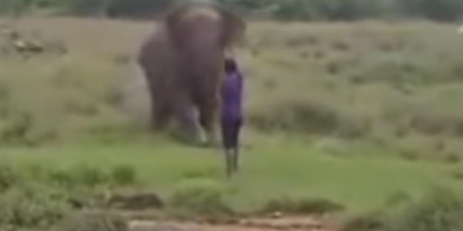VIDEO: Elefante aplasta a hombre que intentaba hipnotizarlo