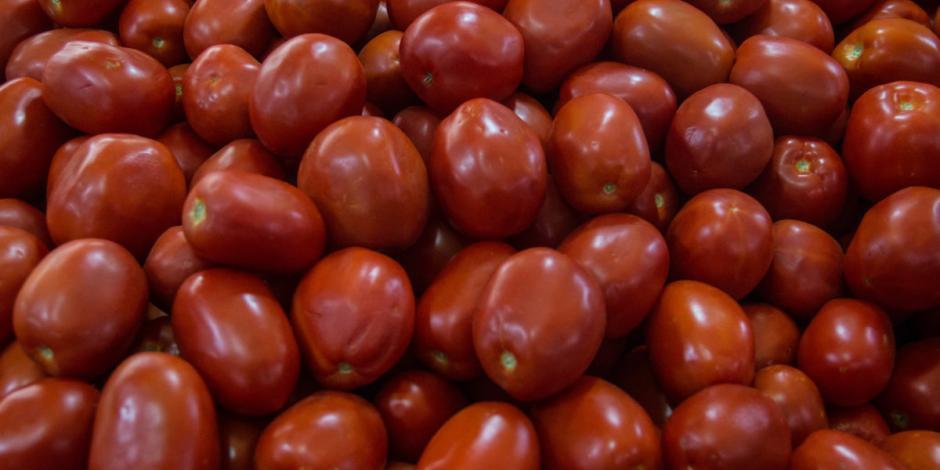 Productores de tomate también buscan retirar el arancel impuesto por EU