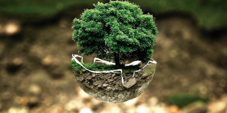 7 de cada 10 mexicanos opta por productos ecológicos