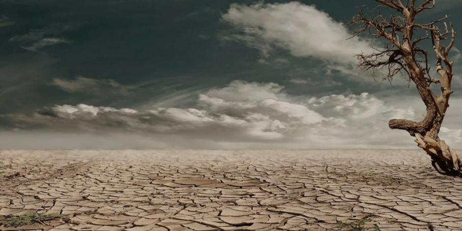 Prevé NASA sequías frecuentes, incendios y escasez de alimento