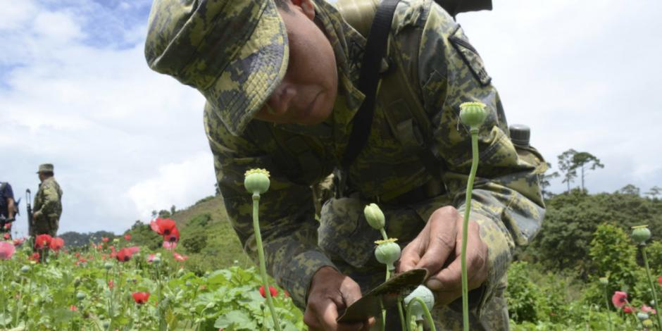 Amaga EU a México con retirar certificaciones si no reduce narcotráfico