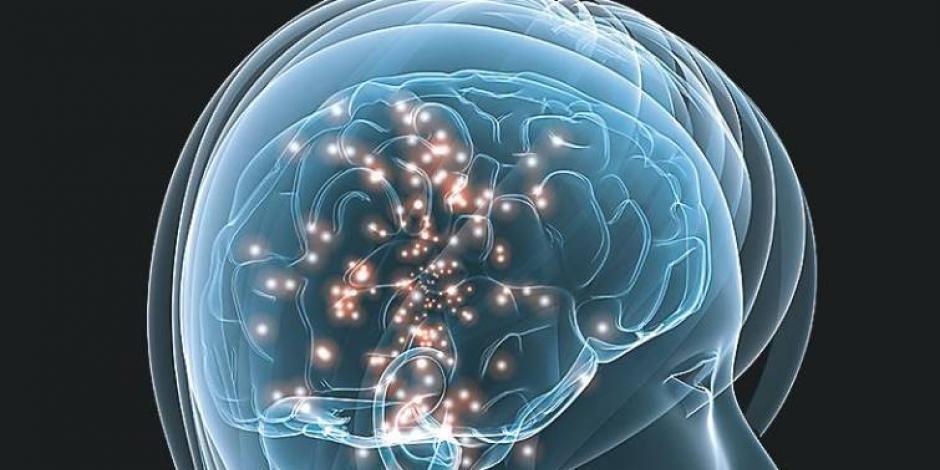 ¿A qué velocidad funciona el cerebro? Descúbrelo