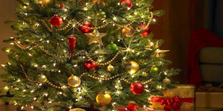 ¿Cuándo se debe de poner el árbol de Navidad? ¡Aquí te decimos!