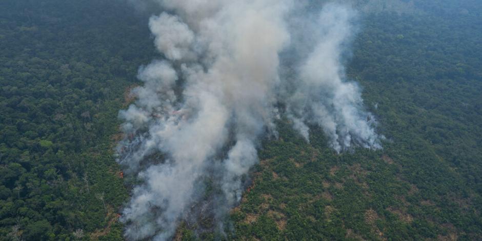 """En riesgo otro """"pulmón de la Tierra""""; hay más incendios en África que en el Amazonas"""