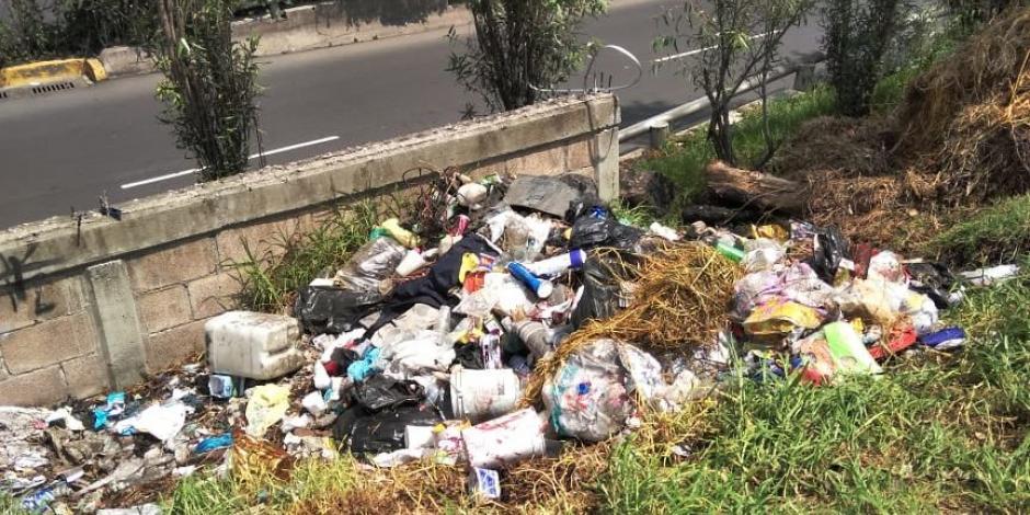 Retiran basura y rehabilitan zona natural protegida en Xochimilco