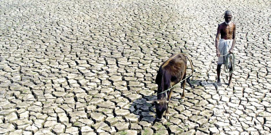 ONU pide bajar el consumo de carne: exige mucha agua