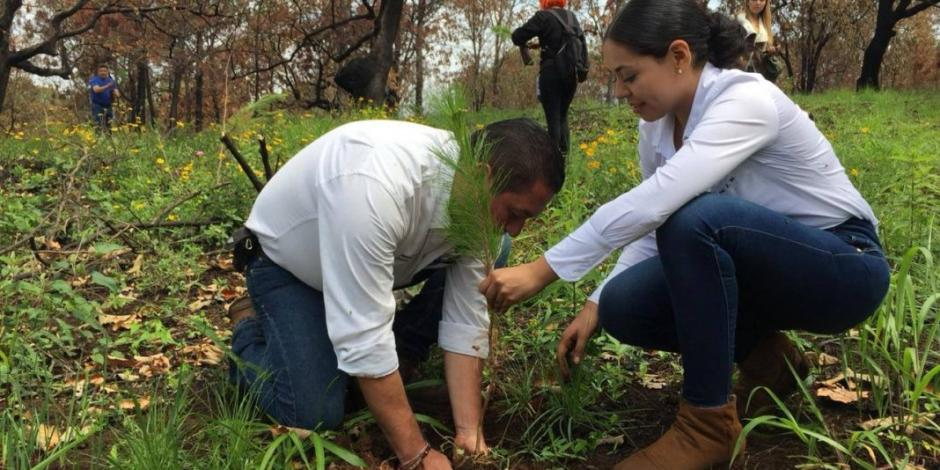 Van por rescate de la montaña más alta de Michoacán