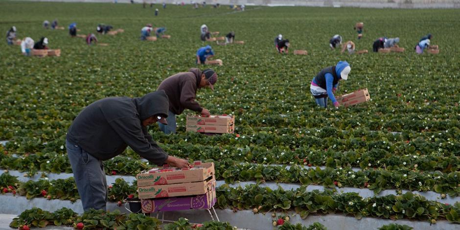 Migrantes en el mundo contribuyen con el 10% del PIB, declara ONU