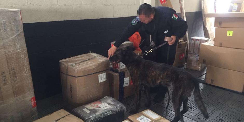 Descubren heroína oculta en pantuflas en aeropuerto de Cancún