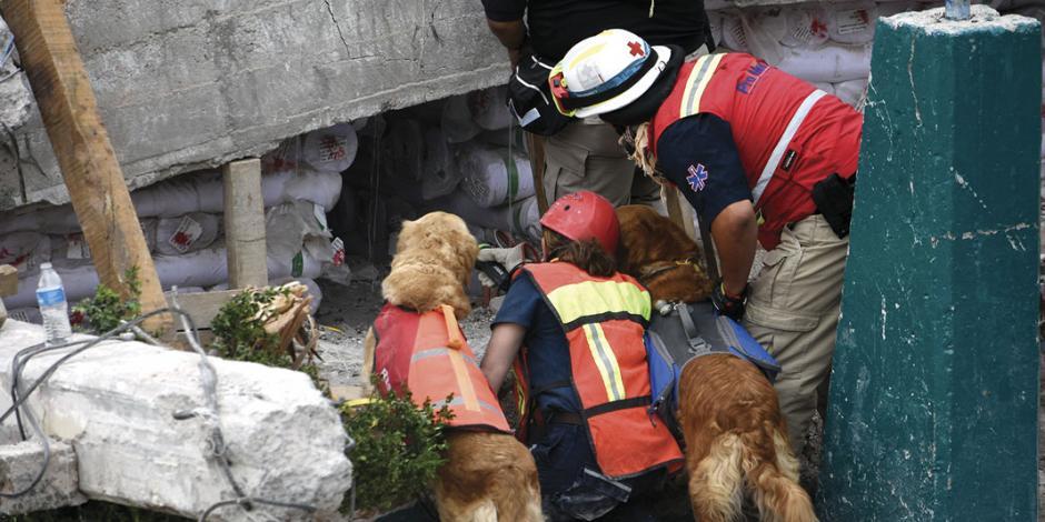 Se separan del dolor de víctimas para hallar origen de sismos en CDMX