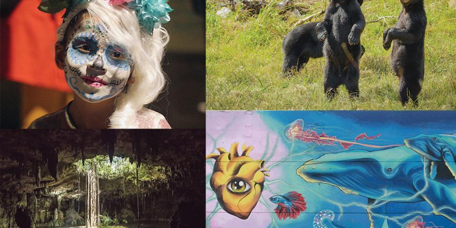 BBC Studios refleja el México salvaje, rural y colorido con serie
